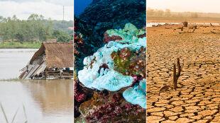 Duże ryzyko rozwoju El Niño. Ostatnie przyniosło ogromne zmiany w pogodzie