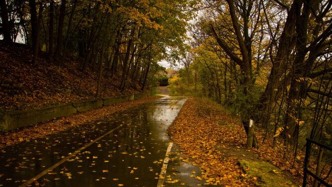 Miejscami na drogach utworzą się kałuże. Spadnie do 10 l/mkw. deszczu