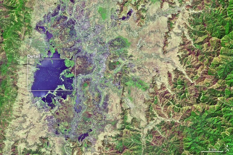 Tysiące phumdisów rozrzuconych po jeziorze Loktak (Joshua Stevens/NASA)